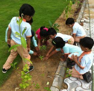 Kids planting sapling, tree plantation,